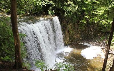 Exploring Hogg's Falls