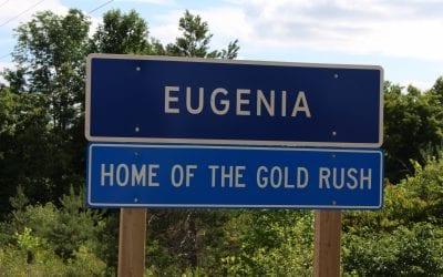 Lake Eugenia – Market Report