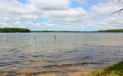 Lake Eugenia Market Sales Report for 2019