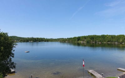 7 Inland Lakes of Grey County Market Report