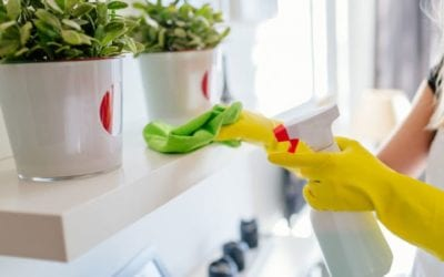 Ultimate Interior Spring Cleaning Checklist